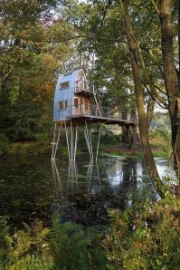 treehouseon pond